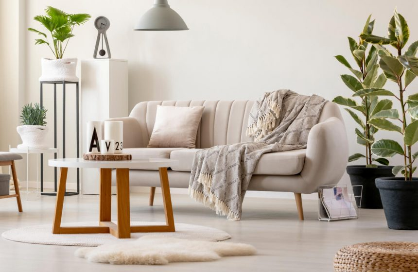 Cozy Living Room for Your House